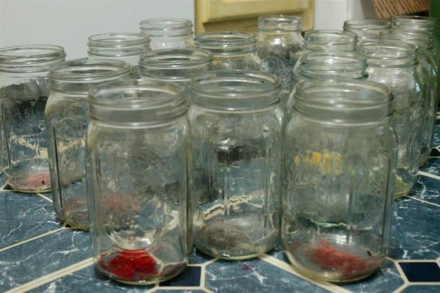 Acid dye in jars